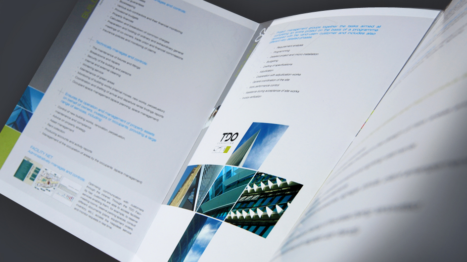 Brochure TDO Consulting